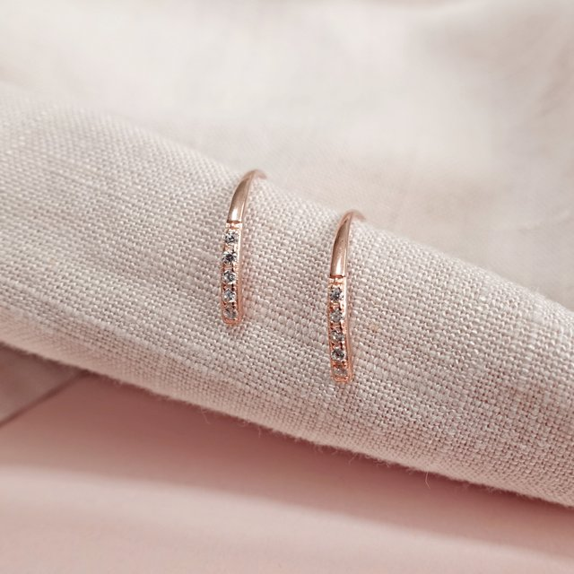 Selena Hook Earrings (Rose Gold)